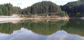 Barajı Krinets resmi | Lucky Bansko
